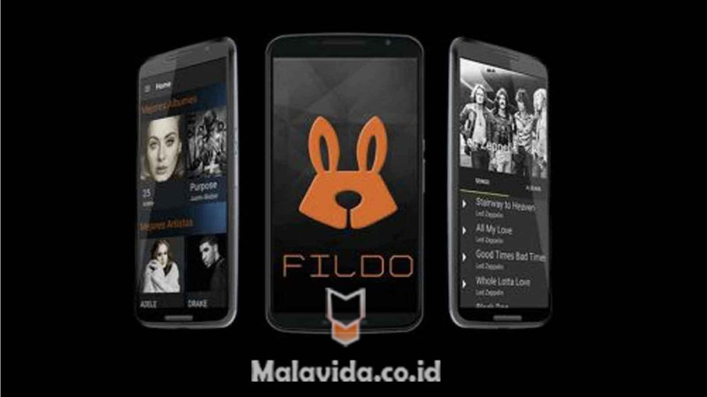 Fildo - Download for Android APK Free